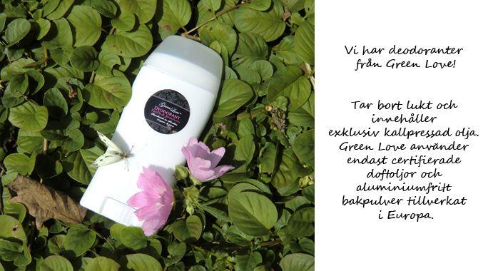 Svensktillverkad ekologisk hud- och hårvård | Eco by H