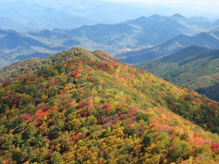 1000 images about fall in love with the smokies on for Privately owned cabins in the smoky mountains