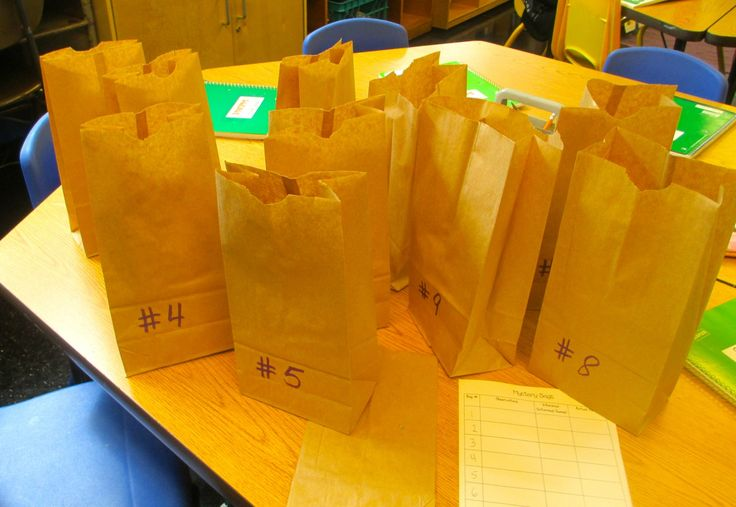 Mystery Bags to Develop Observation and Inference Skills | Scholastic.com