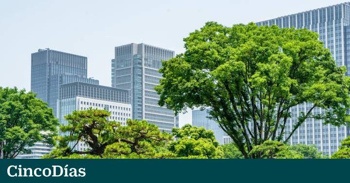 Empresas como BBVA, NH o Santander contratan paisajistas para sus edificios. Las zonas verdes tienen una fucnión de recursos humanos hacia los empleados.