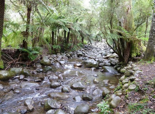 Badger Creek