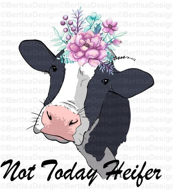 Sublimation Design, Watercolor Not Today Heifer Cow, PNG