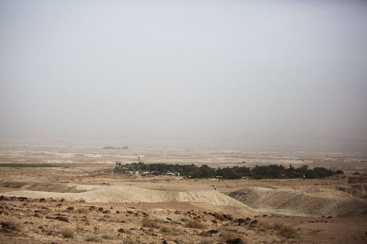 Israel's defence ministry has approved plans to build 153 new settler homes in the occupied West Bank, a spokeswoman for the Israeli settlements watchdog Peace Now said on Monday.  Hagit Ofran said the plans were adopted last week, and involve small settlements in the Ariel area in the northern West