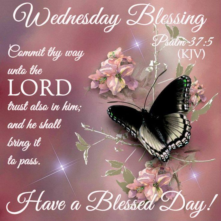 Blessed Day Quotes From The Bible: Wednesday Blessings & Greetings