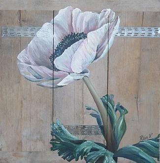 Anemone on scaffolding wood / steigerhout