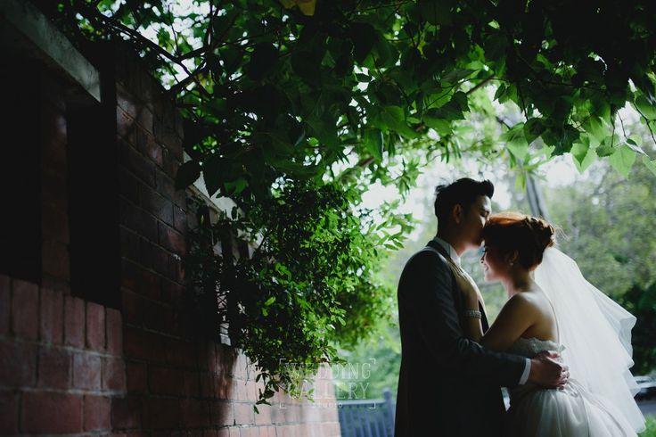 weddinggallery.net.au_The best Sydney wedding photography_weddinggallery.net.au_The best Sydney wedding photography_13