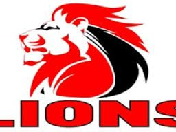 Image result for sa lions rugby