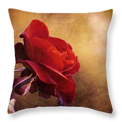 Cuscini - Rosa rossa tiro cuscino da Orazio Puccio
