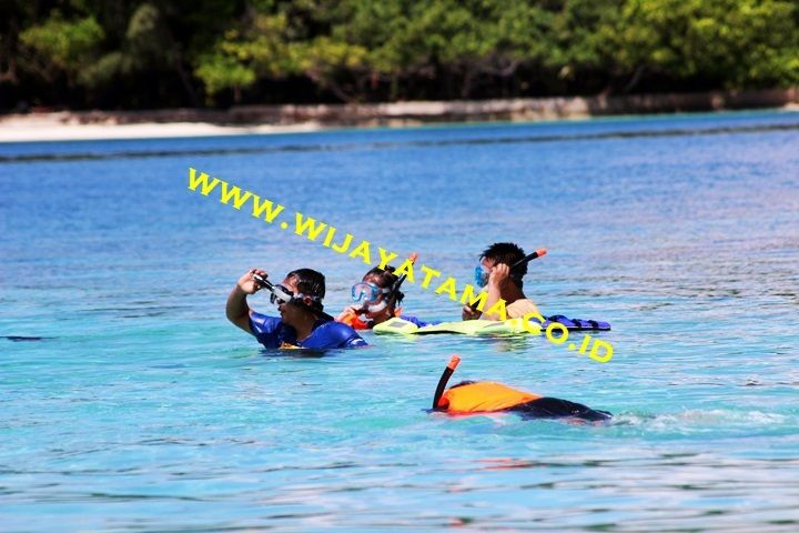 Promo Paket Pulau Seribu, http://www.wijayatama.co.id