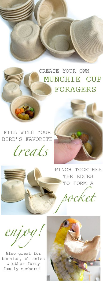 An easy, cheap and fun way to make quick foraging toys. Munchie cups are made from all natural, recycled fibers and are completely non-toxic for our feathered friends!