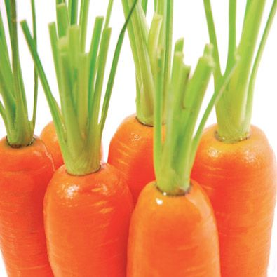 Carrot seed oil is one of the most rejuvenating and regenerating oils that can be used in skincare and helps to improve the complexion, as it helps to remove toxic build-up in the skin and eliminates excess water from the tissue.  Pure carrot seed oil is an expensive ingredient that is mostly found in an adulterated form, where it is mixed with other carrier oils to make it a more affordable ingredient.  We only use pure carrot seed oil in our products, as we are of the opinion that the cost…
