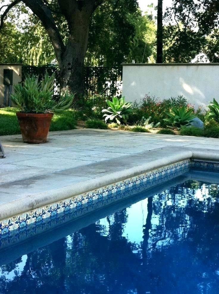 38 Perfect Pool Tiles Backyards Renovation 7537 Pooltiles Tile Poolvibes Swimmingpool Specialpooltile Swimming Pool Tiles Pool Landscape Design Pool Tile