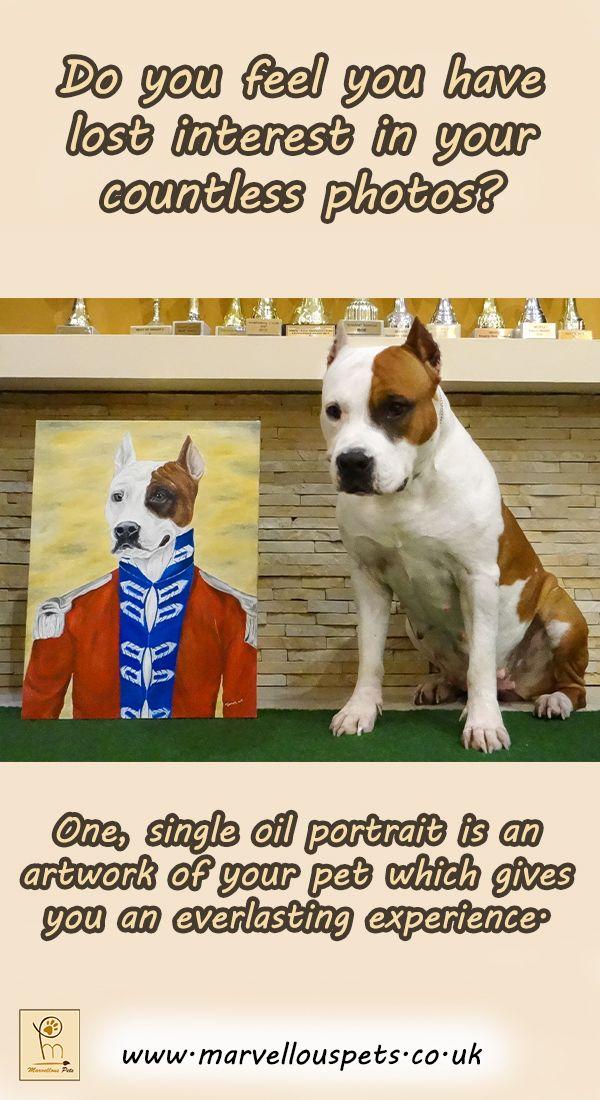 Royal Pet Portrait Custom Oil Painting Dog In Uniform Custom