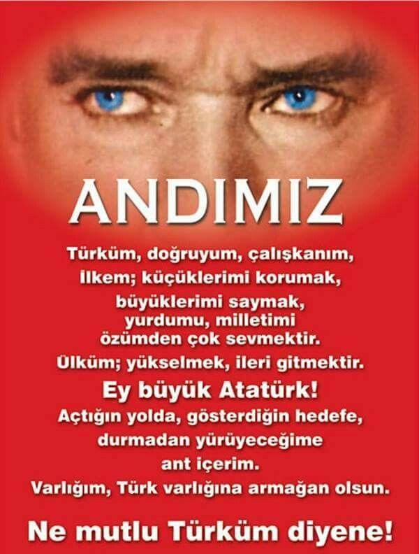 ANDIMIZ