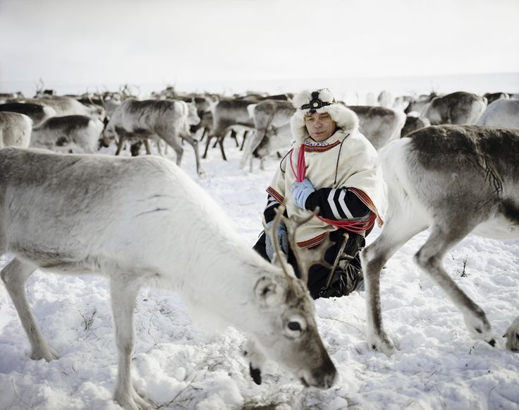 This work was created in Kautokeino, Norway and Gallivare, Sweden where I worked as a beaga, or housekeeper, for a family of Sámi reindeer herders