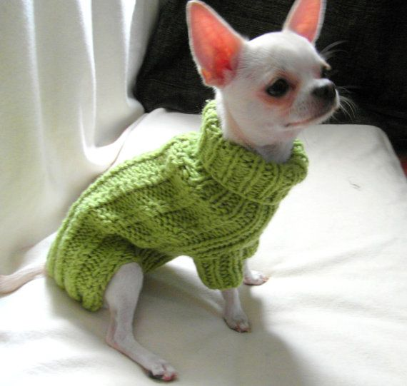 Cable Dog Sweater Chihuahua Clothes Pet clothing by BubaDog