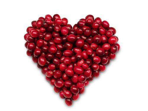 Arandano Rojo Propiedades Medicinales y Beneficios