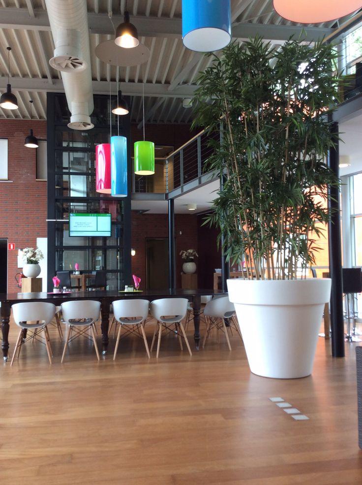 deze klant had 4 bamboe kunstplanten staan en wilde graag meer rust in de ruimte. We hebben alle bamboe planten in een grote plantenbak gezet en geven zo rust aan dit interieur!