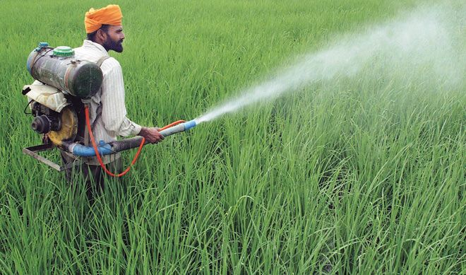 CIBRC to assess pesticides usage every 10 years