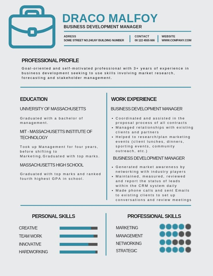 Business Development Manager Resume Samples & Templates