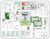 Life Cycle of Plants: 20 Activities & Foldable Flower Project Book product from AroundTheKampfire on TeachersNotebook.com