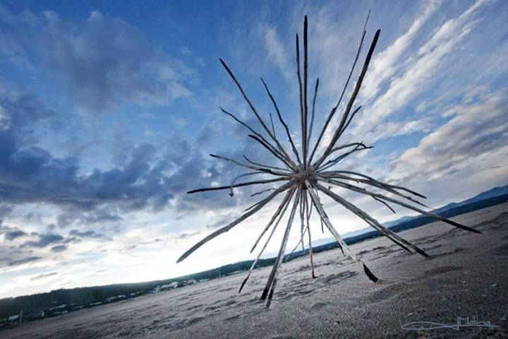 """FACEBOOK 22 Aug. Imagician (photo).  'Radial Symmetry' by Cha Davenport at Lookout Beach in Plettenberg Bay. """"I wonder at the simple and elegant symmetry and patterning of molecules, universal structures and everything in between."""" Site_Specific #LandArtBiennale. #LandArt #Plett"""