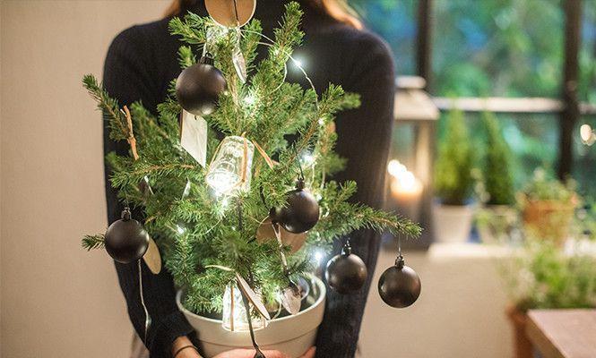 Questa tavola è fatta di tante piccole sorprese. L'alberello è decorato di bicchierini e cucchiaini, così, al momento del dessert, ogni commensale potrà servirsi delle stoviglie direttamente da qui... e risparmiare al padrone di casa il lavoro di disallestire l'albero.