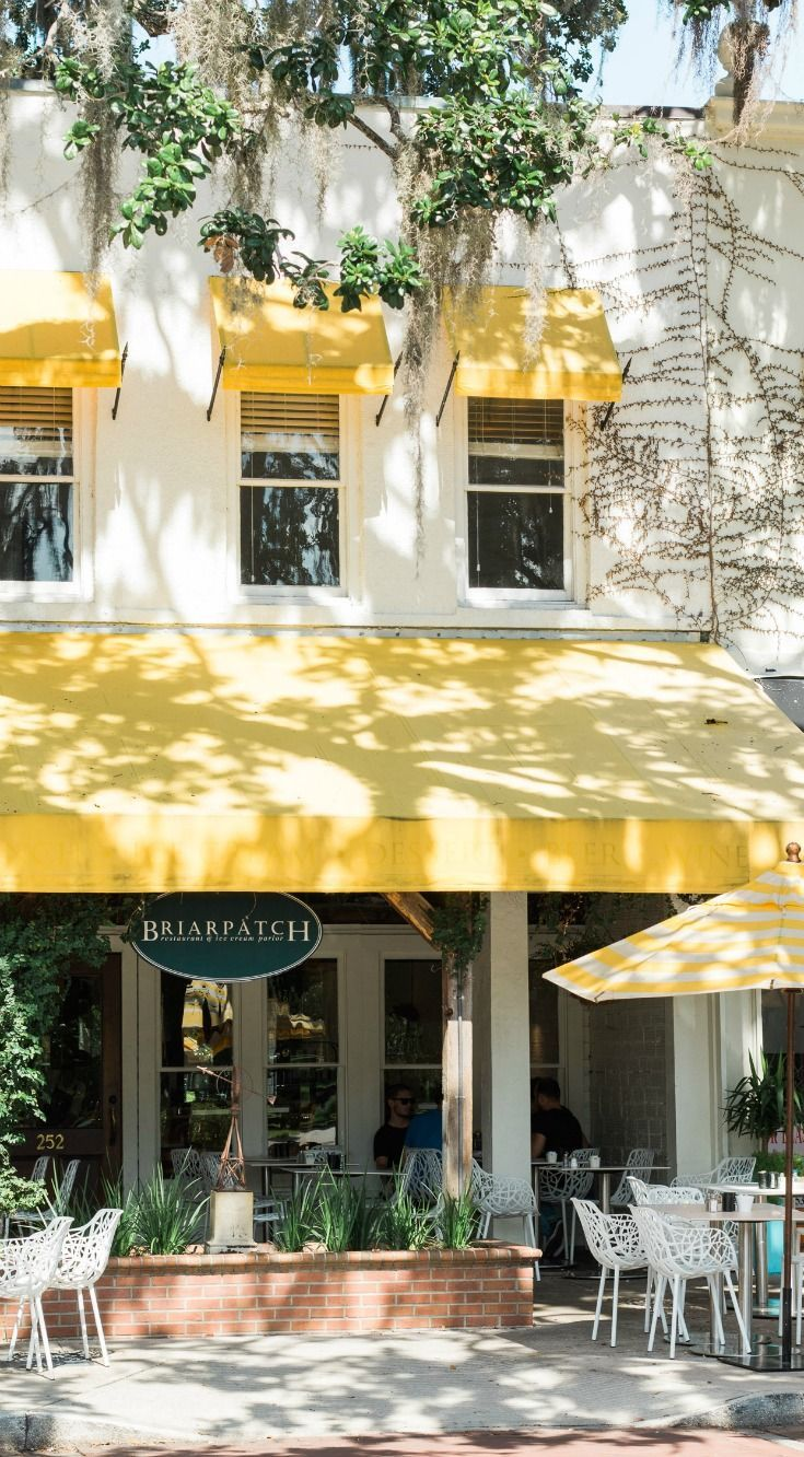 Briarpatch Restaurant in Winter Park, Florida is one of Orlando's hidden gems! Planning a trip to Orlando? I've rounded up the top 10 things to do in Orlando, Florida, that are guaranteed to make your trip a success. Whether you're moving to Orlando or just headed in on vacation, you will LOVE this list of fun activities in Orlando by Florida travel blogger Ashley Brooke Nicholas #CORTatHome sponsored by @cortfurniture | affordable travel tips, orlando vacation tips, florida travel, vacation…