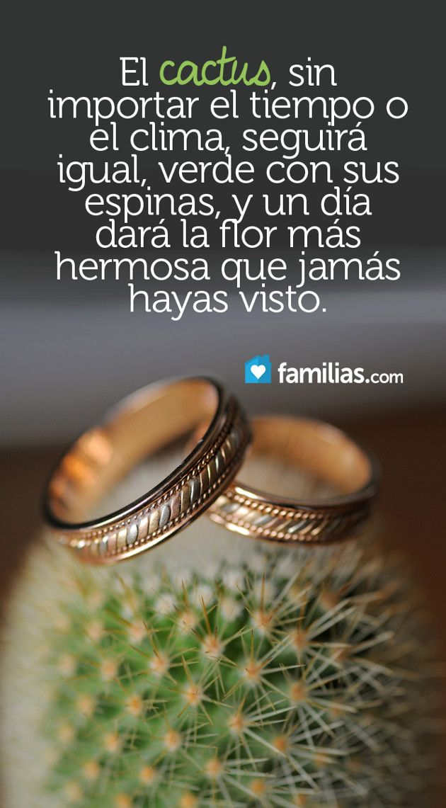 Infidelidad Matrimonio Biblia : Images about amor y matrimonio on pinterest te amo