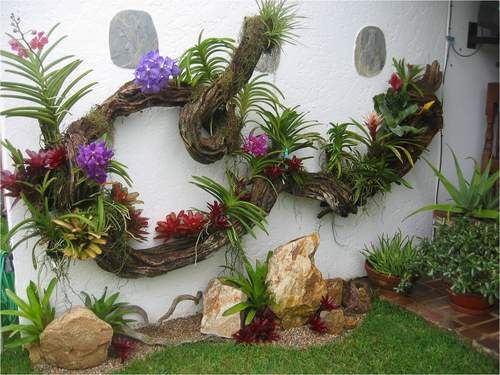36 best images about mini jardines con piedras on for Catalogo de flores de jardin