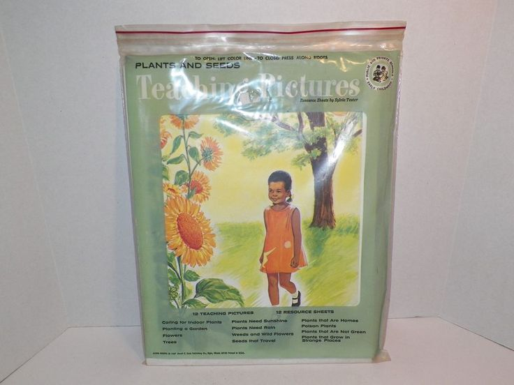 Teaching Pictures Plants and Seeds 1967 David C Cook Resource Sheets Complete  #TeachingPictures