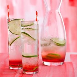 Sweet and sour gin & tonic | Food & Recipes | Pinterest