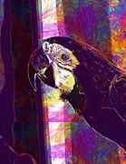 """New artwork for sale! - """" Ara Parrot Bird Color Beak  by PixBreak Art """" - http://ift.tt/2tTc8KV"""