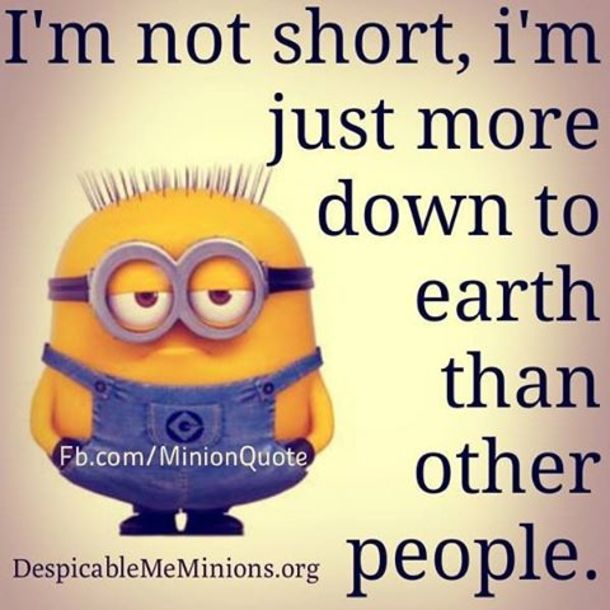 Humor Inspirational Quotes: 25+ Best Short Funny Quotes On Pinterest