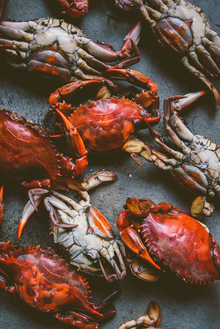 """Crabs"" Food Photography"