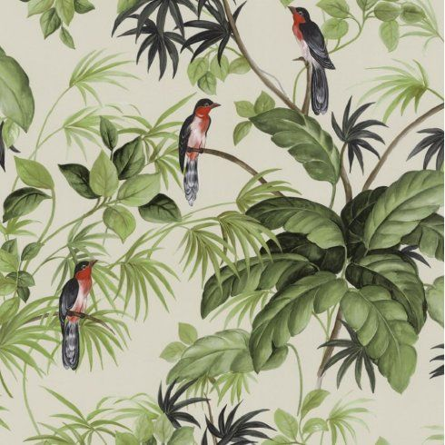 Paradise Birds   Blue / Green   Tropical   Exotic   Rain Forest   Wallpaper  In Home, Furniture U0026 DIY, DIY Materials, Wallpaper U0026 Accessories