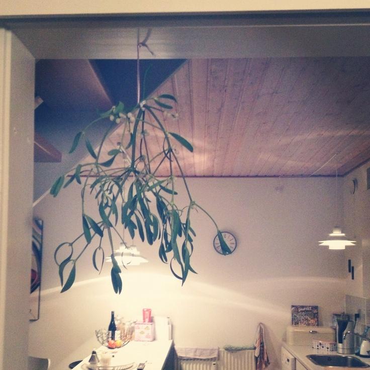 Mistletoe, christmas, stilia, Odense, home,