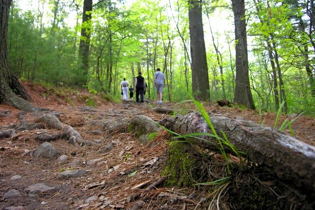 With its beautiful scenery and miles upon miles of trails, Long Island is an ideal environment for nature lovers! But why head out alone when you can be joined by like-minded people? Here are some local hiking clubs that will keep you motivated on the trails and having a great time with new friends!