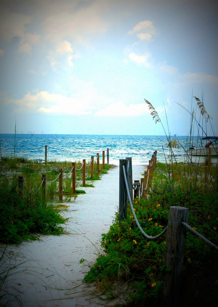 28 Best Images About Sanibel Island: My Favorite Place