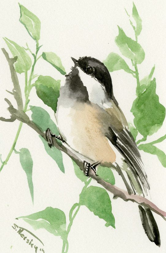 Chickadee one of a kind original watercolor painting, bird art, sage brown colors small original painting gift bird lover chickadee art by ORIGINALONLY on Etsy
