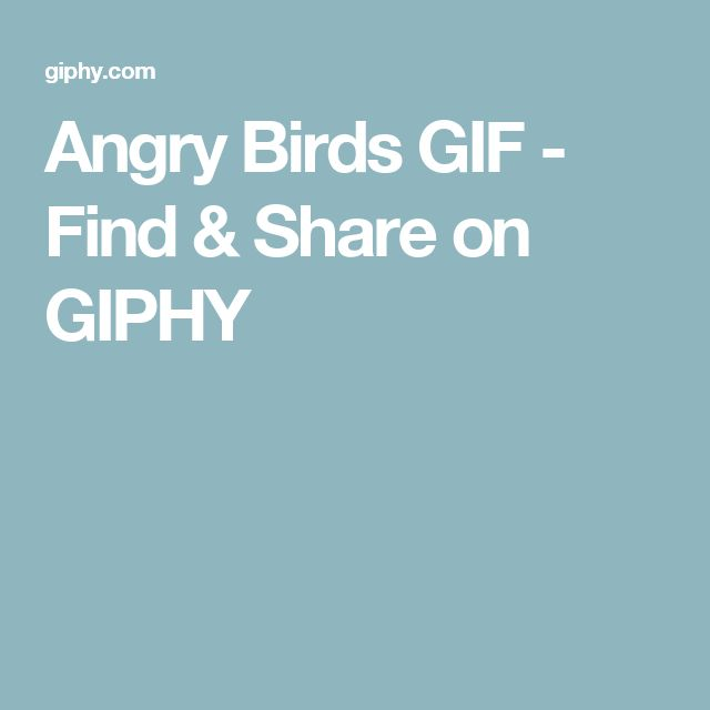 Angry Birds GIF - Find & Share on GIPHY