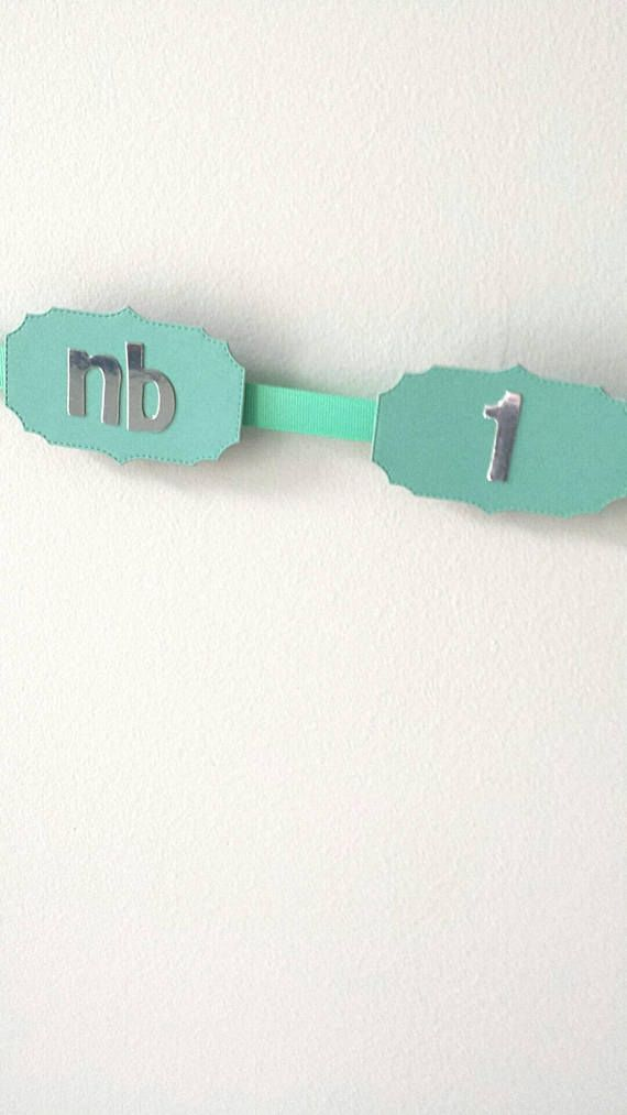 Check out this item in my Etsy shop https://www.etsy.com/ca/listing/540611350/12-month-photo-banner-teal-silver-foil