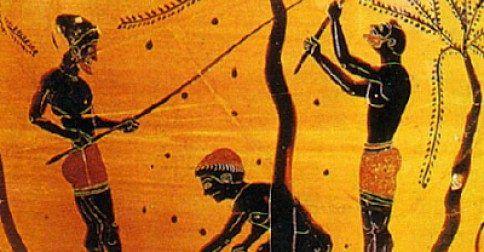 Συνταγή Από την Αρχαία Σπάρτη: Ισχυρό φάρμακο που ενισχύει τα οστά!: http://biologikaorganikaproionta.com/health/251073/