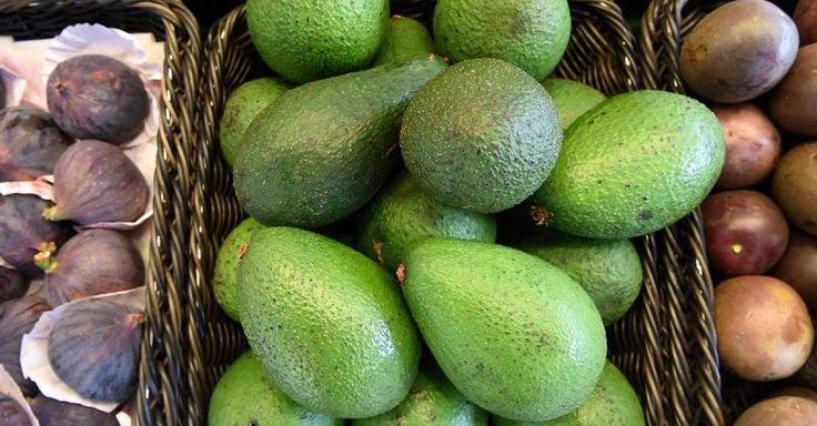 In Mexiko - Avocado-Boom führt zu illegaler Abholzung  - http://ift.tt/2bLfR2V
