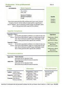 Curriculum Vitae - Modello 04 : Modello Curriculum