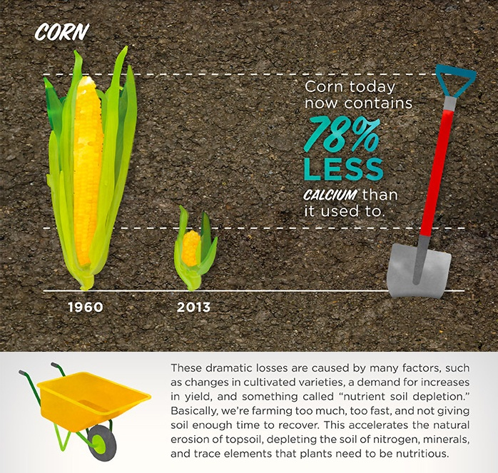 THEY DON'T MAKE PRODUCE LIKE THEY USED TO    Personally, I avoid corn. Not only is it nutrient deficient..It is also the most genetically modified organism (GMO)  on the planet.      Now that you know, how will you make sure your getting the nutrients you need to thrive?    http://naturalifextension.com/2013/04/18/are-todays-fruits-and-vegetables-as-nutritious-as-they-used-to-be/    http://naturalbodyreset.com/