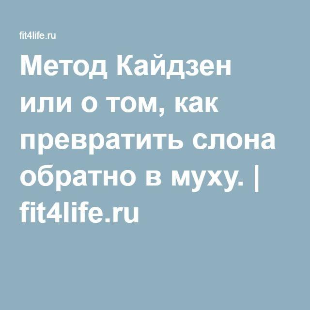 Метод Кайдзен или о том, как превратить слона обратно в муху. | fit4life.ru
