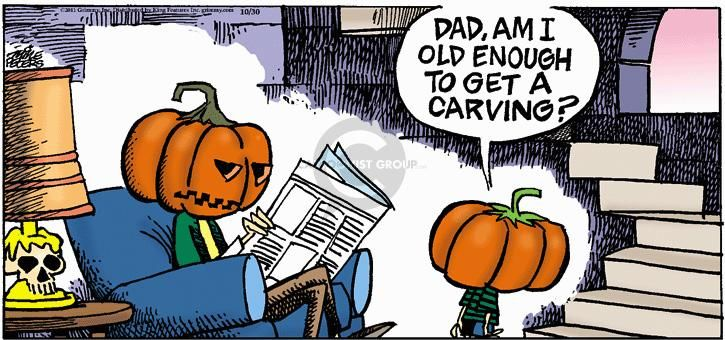 The Comic Strips - Mike Peters :: Mother Goose and Grimm :: 2011-10-30 :: Image Number: 72593 :: Dad, am I old enough to get a carving? :: Halloween, pumpkin, jack-o-lantern.