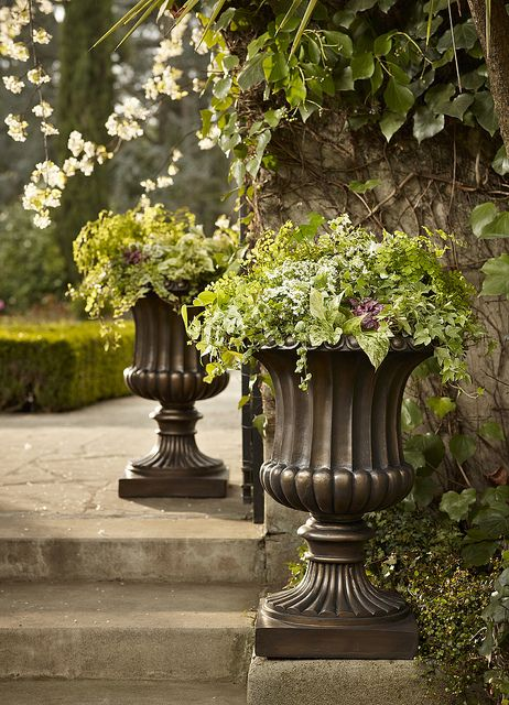 Urns  and traditional garden