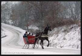 """Amish Country  A Winter Sleigh Ride with Horses / Come join me on (""""Believe in the Magic of Christmas"""" on Facebook & Pinterest) I plan to Surprise & Delight you this Holiday Season!  XOX Jody"""